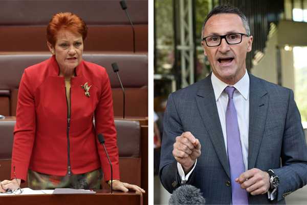 Pauline Hanson rips into Richard Di Natale for blaming bushfires on climate change