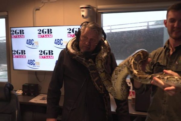 Article image for WATCH | Ray Hadley meets Fluffy… the gigantic Burmese python