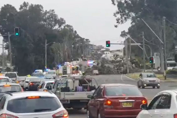 Article image for Heavy winds cause chaos across Sydney