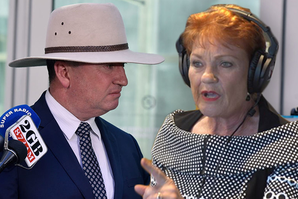 'Useless as tits on a bull': Pauline Hanson slams Barnaby Joyce