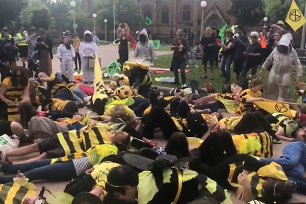 Article image for Extinction Rebellion protesters wreak havoc in Sydney CBD