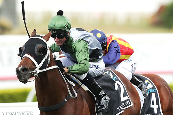 Jockey pulled to safety hours before his victory