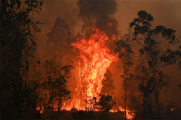 Article image for NSW bushfires: The worst is yet to come as 'catastrophic' conditions forecast