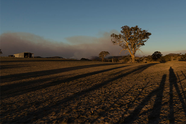 'They're bastards!': Looters targeting homes evacuated due to bushfires