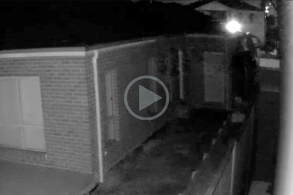 Article image for WATCH   Serial arsonist caught on camera