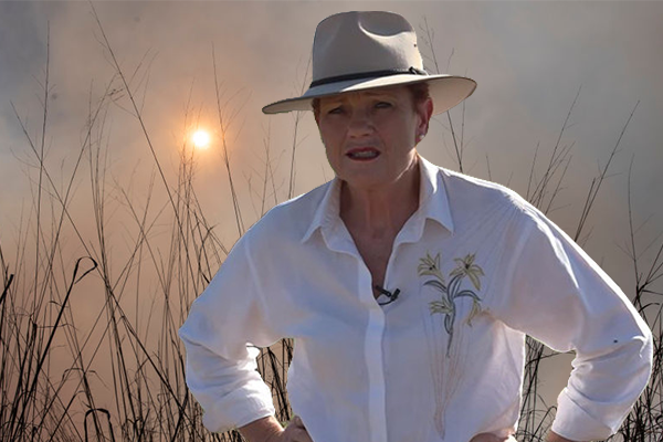 Article image for 'Fires aren't far from my own home': Pauline Hanson faces property evacuation