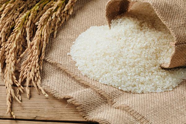 Rice jobs cut amid crippling drought