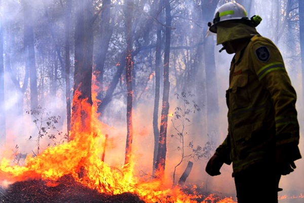 Minister 'confident' in resources to fight unprecedented bushfires