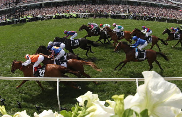 'He's a fighter': Melbourne Cup stays in Australia with Vow And Declare's ride to glory
