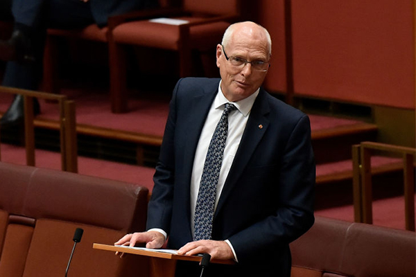Jim Molan makes long-awaited return to the Senate