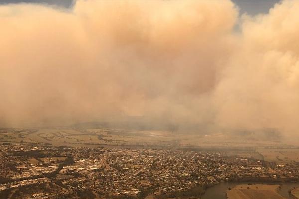 Peta Credlin 'yet to be convinced' on bushfire royal commission
