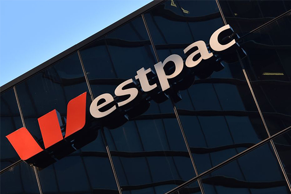 Westpac CEO survives and promises independent review into 'massive failure'
