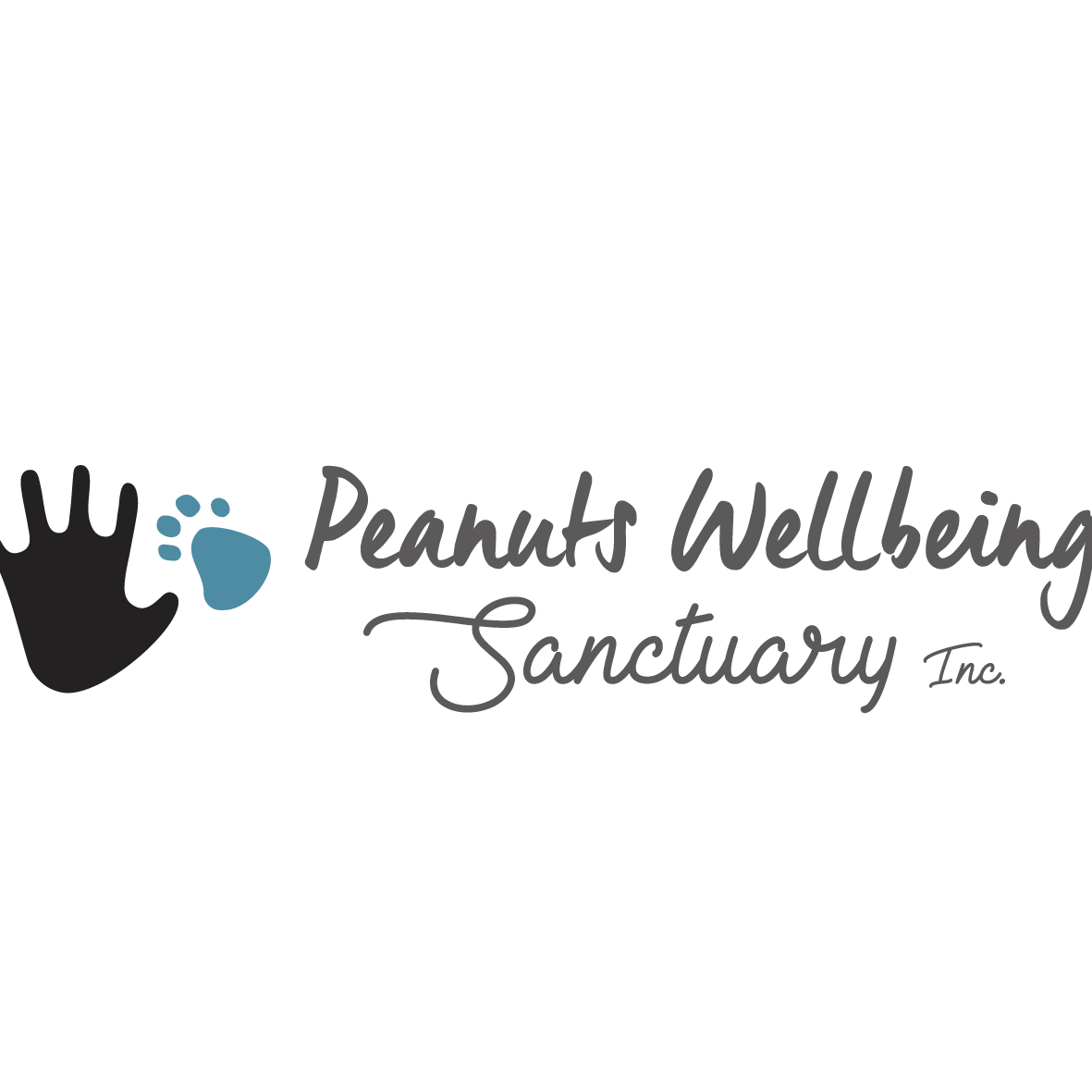 The Peanuts Wellbeing Sanctuary needs your help