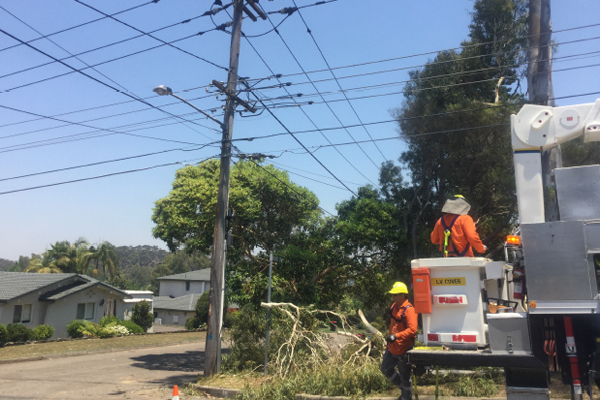 Article image for 1700 homes still without power almost a week after 'cyclone-like' storm