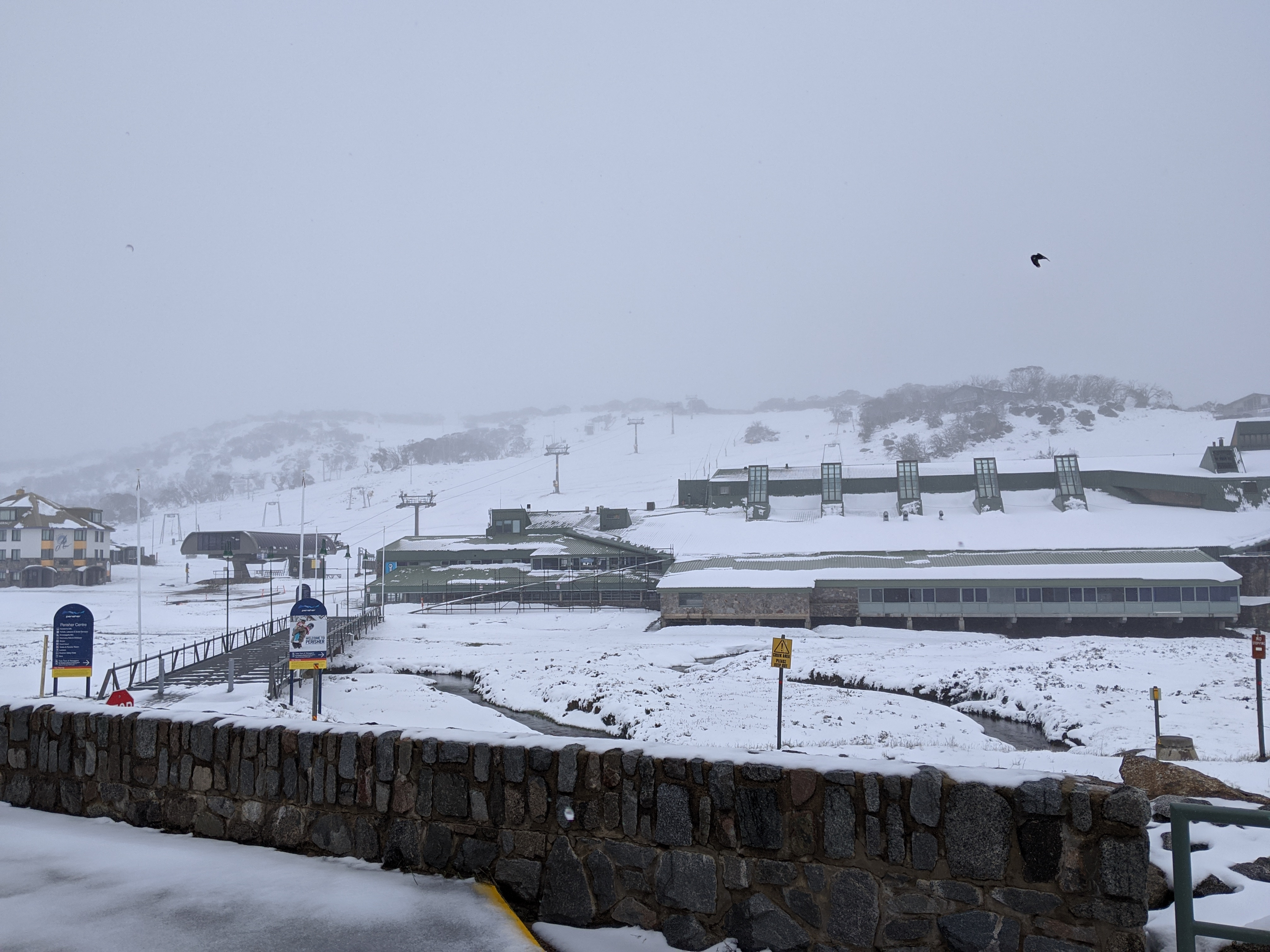 Article image for Summer snowfall in Perisher has residents gambling on a white Christmas