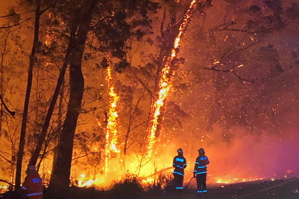 Article image for 'Too late to leave': Bushfire bearing down on South Coast residents