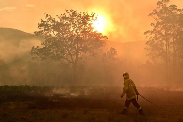 Article image for Premier declares state of emergency as two bushfires hit emergency warning level