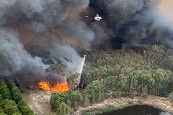 Mark Latham says fuel loads need to be reduced to prevent bushfires