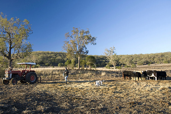 Article image for 'Inexplicable': Hundreds of farmers left without support for months