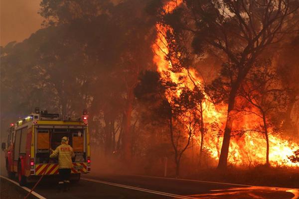 John Stanley: Bushfire Emergency Special