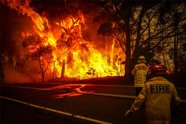 Article image for Father and son confirmed dead in NSW bushfires