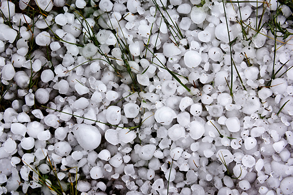 Roofers caught trying to raise prices after Sydney hailstorm