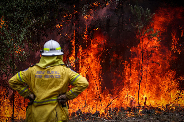Article image for 'We are the world leader': Government refutes claims bushfire response is inadequate