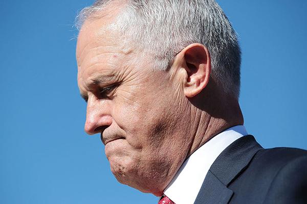 Article image for Rita Panahi slams 'absolutely delusional' Malcolm Turnbull