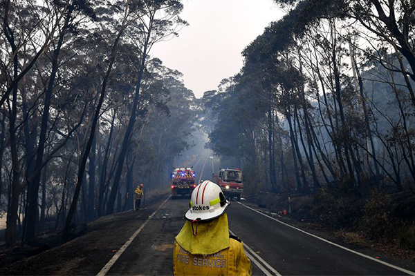 Article image for 'Vast majority' of volunteer firefighters don't want to be paid