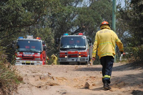 Article image for Man caught allegedly trying to start bushfire on the NSW South Coast