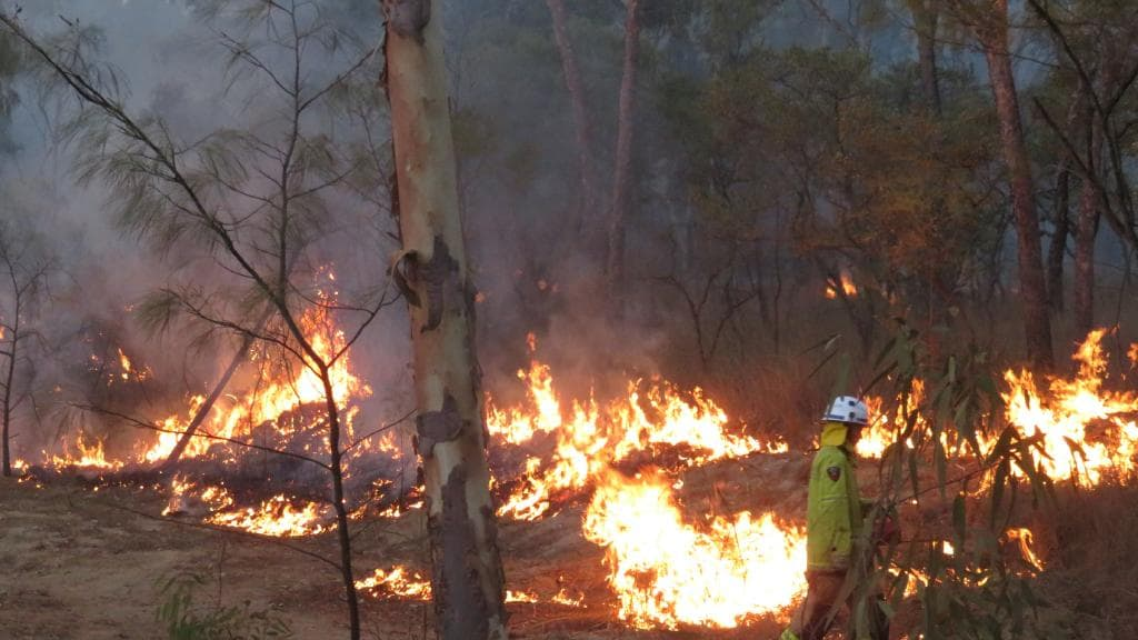 David Packham: Fires have settled, but the heat is still on