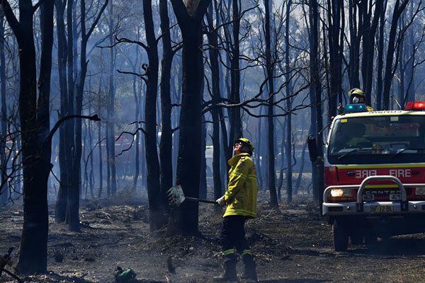 Article image for Repairs underway for over 170 NSW schools impacted by bushfires