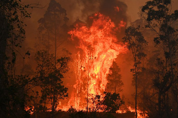 Article image for 'Today is all about saving lives': NSW braces for extreme fire conditions