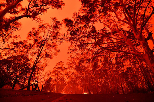 Article image for Police Commissioner warns those who accidentally start fires will be charged with bushfire deaths