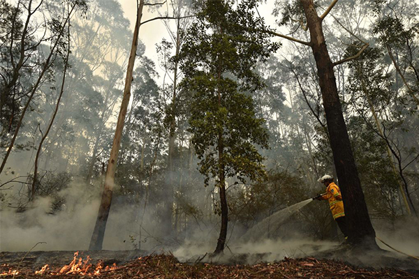 Article image for Property and lives at risk as NSW braces for extreme fire danger