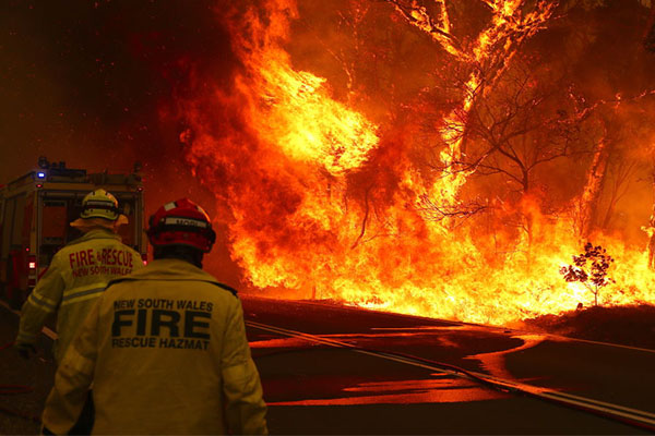 Article image for The 'cracking idea' to celebrate NSW firefighters