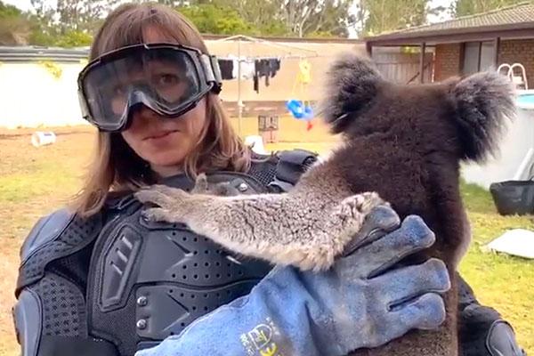WATCH | UK reporter pranked with 'vicious' koala