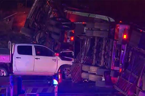 Traffic chaos as truck crash spills beer all over Sydney motorway