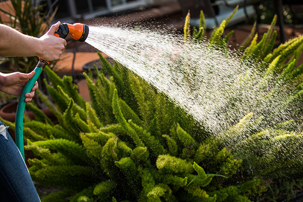 What you can and can't do when water restrictions change tonight