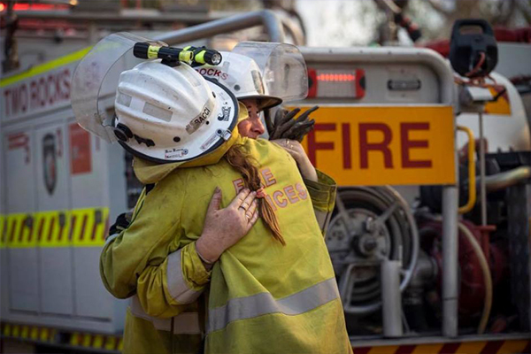 Article image for Lifeline launches bushfire recovery support line