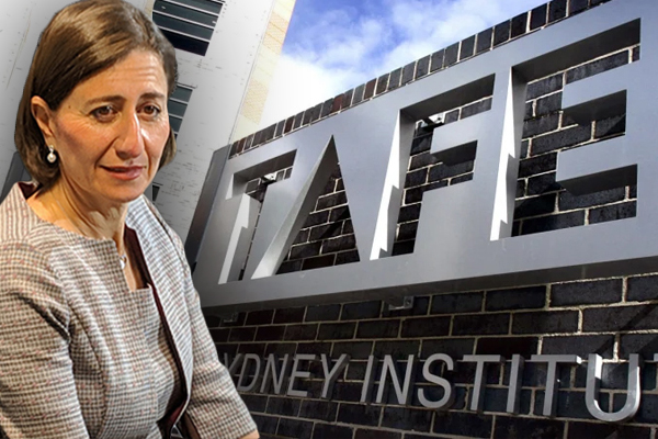 Article image for Premier welcomes private investment in TAFE amid major review