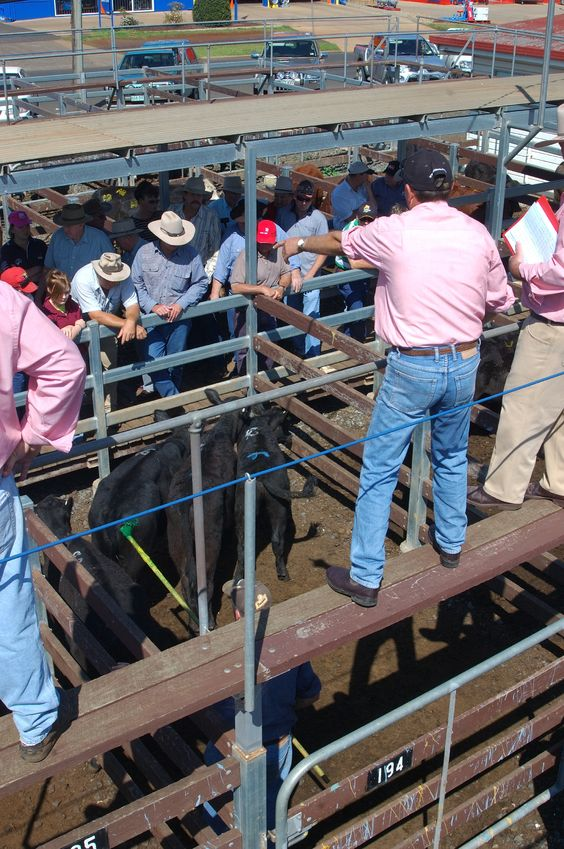 Social gathering exemptions for farm sales