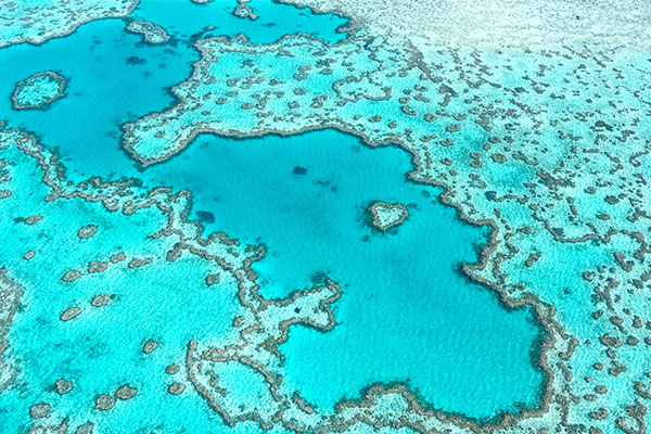 Article image for Australia 'fighting back' as China accused of targeting Great Barrier Reef