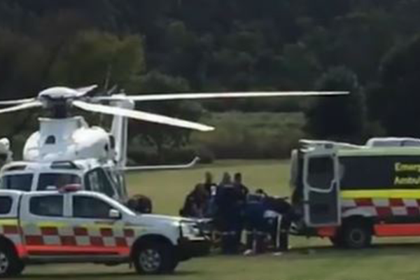 Australian zoo keeper in critical condition after vicious lion attack