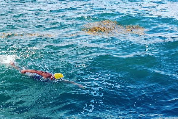 Article image for Aussie marathon swimmer fighting illness ahead of world record-breaking swim