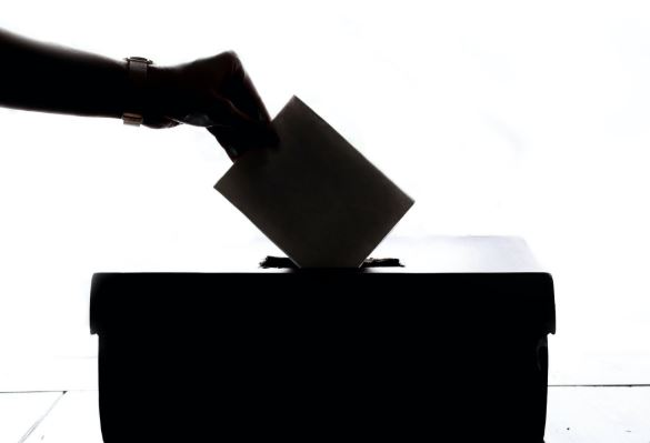 Call for voter ID at federal elections