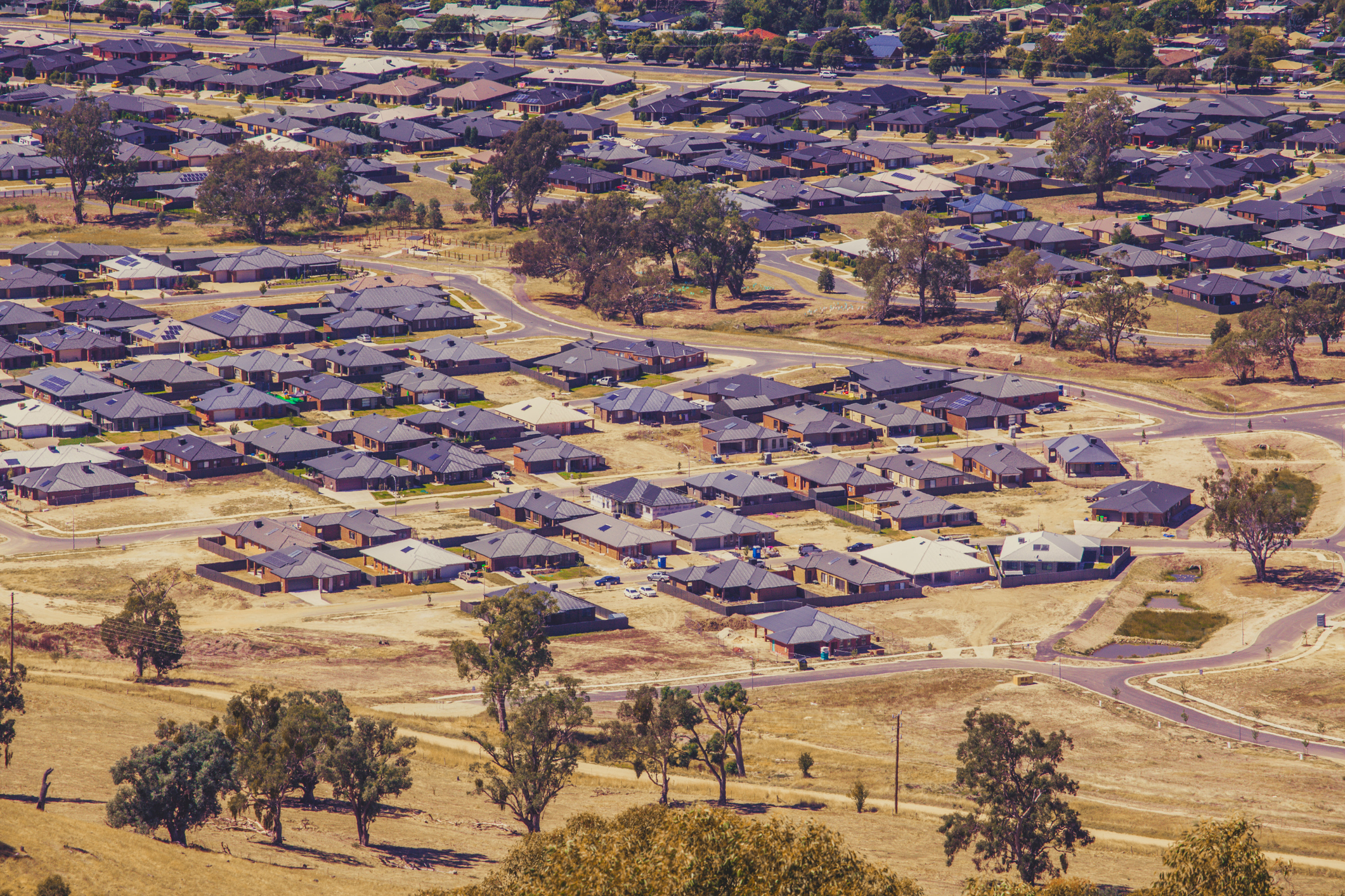 Article image for Border communities begging for clarity from Service NSW amid permit 'nightmare'