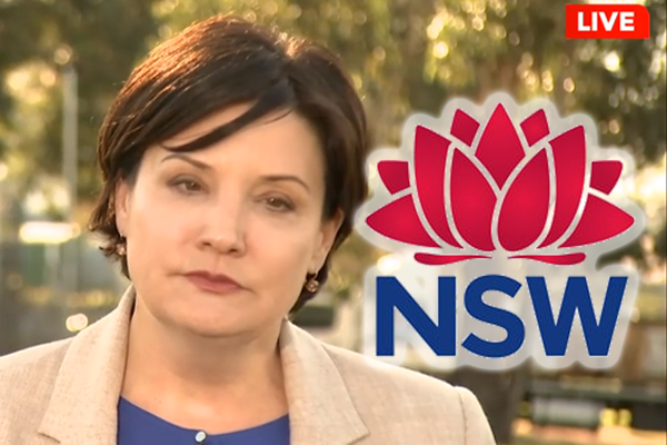 'These are good people': Opposition leader voices support for NSW Health
