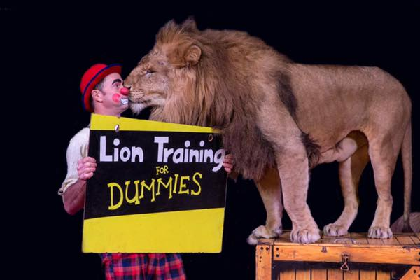 Circus owners defend themselves against 'extremist animal groups'