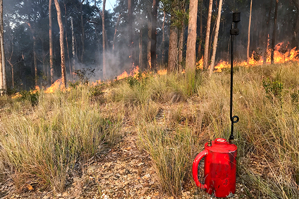 Article image for Landowners to be required to do hazard-reduction burns on their properties